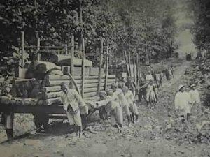 Kebijakan Pemerintah Kolonial Di Indonesia Pada Masa Abad Ke-19 Dan Abad Ke-20