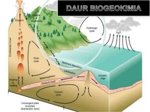 daur-biogeokimia-1-638