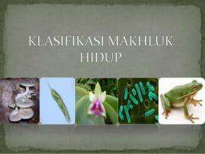 klasifikasi-makhluk-hidup-1-638
