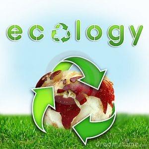 pemahaman ekologi tumblr_maefc5tpV01rqehx4