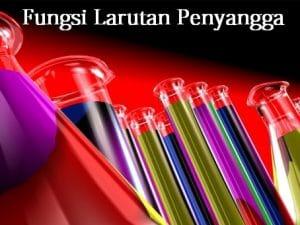 fungsi larutan penyangga kimia