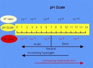 pH, pOH, dan pKw