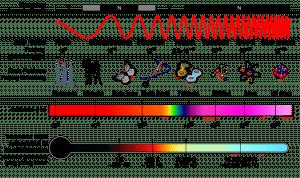 spectrum gelombang