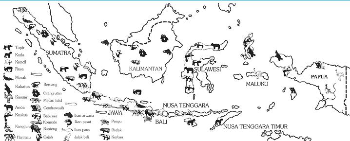 Peta persebaran hewan di Indonesia