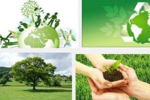 Pengertian Lingkungan Hidup Secara Umum Pelajaran Sekolah Online
