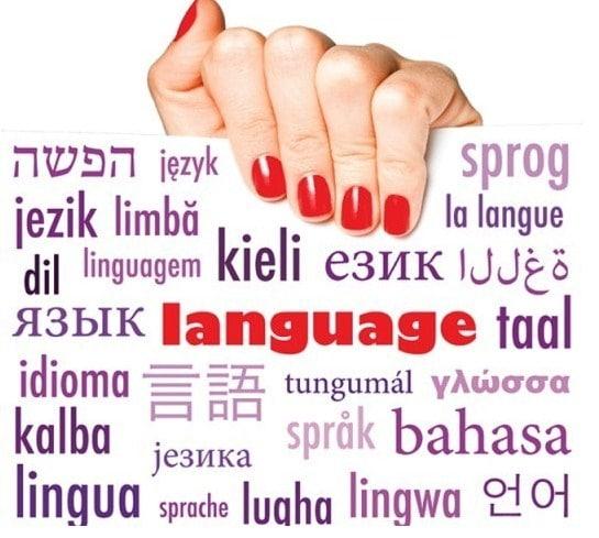 31 pengertian bahasa menurut para ahli dan fungsinya lengkap pelajaran sekolah online