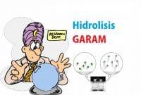pengertian hidrolisis garam