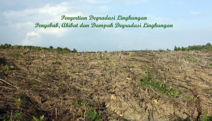 Degredasi Lingkungan
