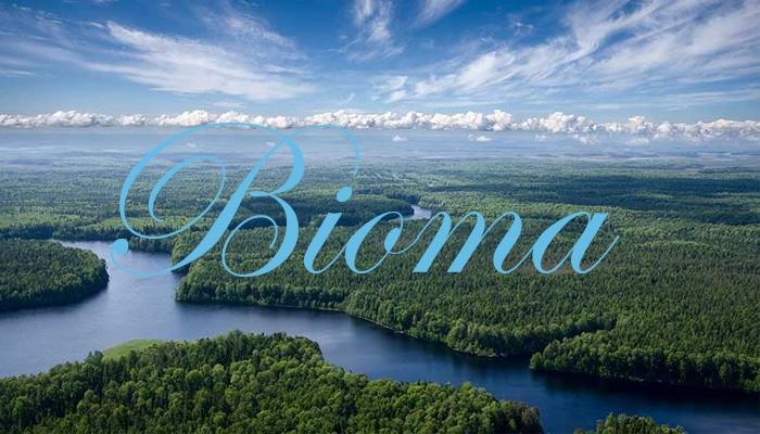 Pengertian Bioma, Ciri, Fungsi, Dan Jenis-Jenis Bioma ...
