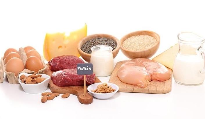 Pengertian Protein, Fungsi, Struktur, Klasifikasi Jenis ...