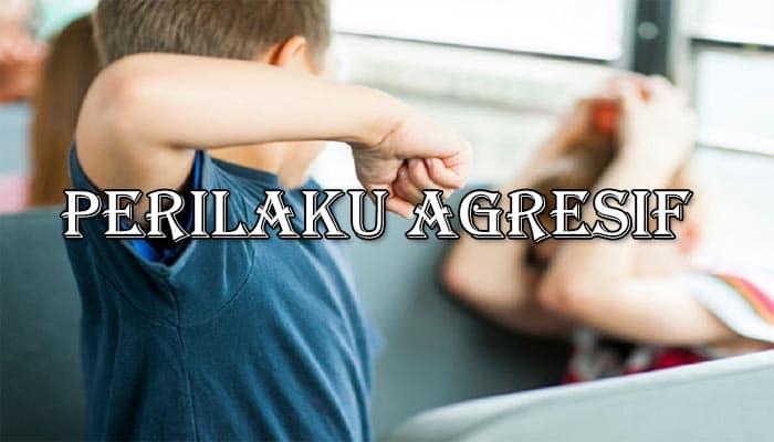 Pengertian Agresif, Ciri Dan Jenis Bentuk Perilaku Agresif